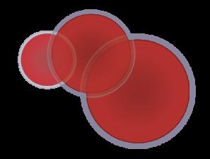 nascita-haematococcus